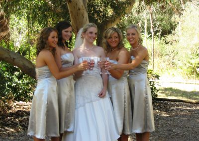Bridal Party in the Garden-web